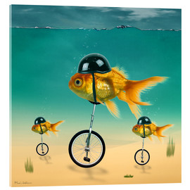 Acrylic print  gold fish - Mark Ashkenazi