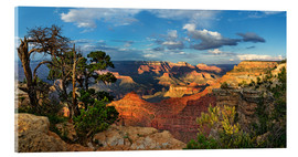 Acrylic print  Grand Canyon with knotty pine - Michael Rucker