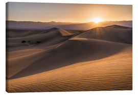 Canvas print  Sunset at the Dunes in Death Valley - Andreas Wonisch