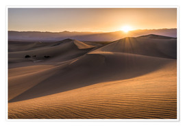 Premium poster  Sunset at the Dunes in Death Valley - Andreas Wonisch