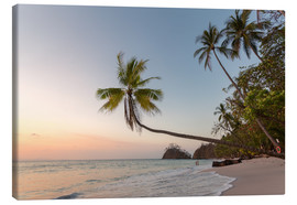 Canvas print  Palm tree and exotic sandy beach at sunset, Costa Rica - Matteo Colombo