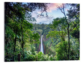 Acrylic print  Rainforest and Waterfall, Costa Rica - Matteo Colombo