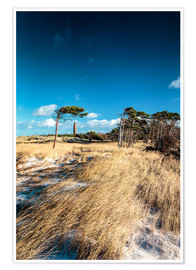 Premium poster Dunes and Lighthouse at the Baltic Sea
