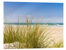 Acrylic print  Beach with dune grass in sand