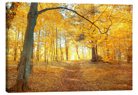 Canvas print  Golden autumn forest