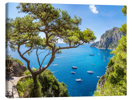 Canvas print  A beautiful summer on Capri