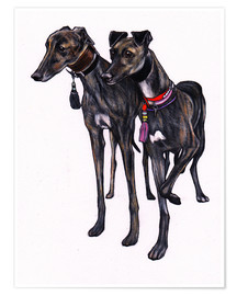 Premium poster  Brindle greyhounds - Jim Griffiths