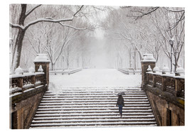 Acrylic print  Winter in Central Park