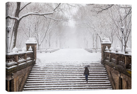 Canvas print  Winter in Central Park