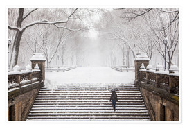 Premium poster Winter in Central Park