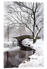 Acrylic print  Winter in New York