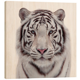 Wood print  The white tiger