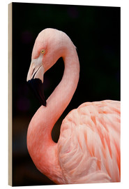 Wood print  Pink Flamingo