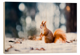 Wood print  Squirrel looking for its nut