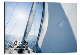 Aluminium print  The sailing trip