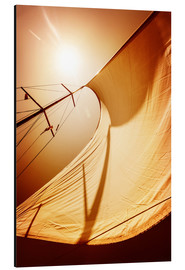 Aluminium print  Sail in the wind II