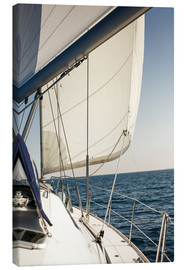 Canvas print  White sails and the open sea