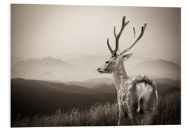 Foam board print  Stag in the Mountains