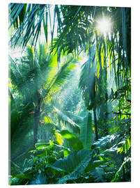 Acrylic print  Jungle fever