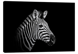 Canvas print  Zebra - close up