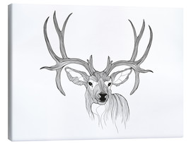 Canvas print  Stag