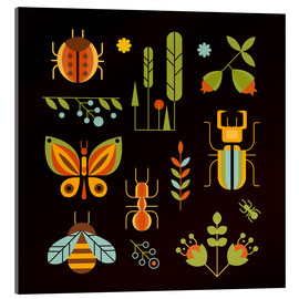 Acrylic print  Retro Insects