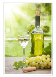 Premium poster  White wine glass and bottle