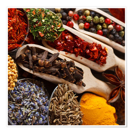 Premium poster  Colorful Spices and Herbs