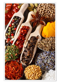 Premium poster  Colorful aromatic spices and herbs