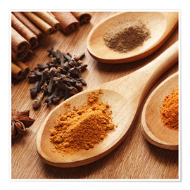 Premium poster  Herbs and spices on wood