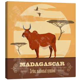 Canvas print  Madagascar - Zebu