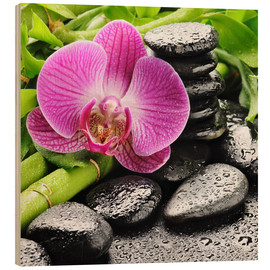 Wood print  Zen stones and pink orchid