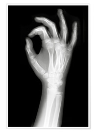 Premium poster  X rayed OK sign