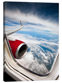 Canvas print  View from the airplane