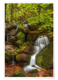 Premium poster Waterfall in the forest