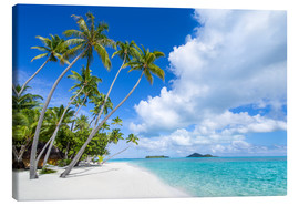 Canvas print  Palms on the beach with turquoise water - Jan Christopher Becke