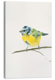 Canvas print  Blue tit - Dearpumpernickel