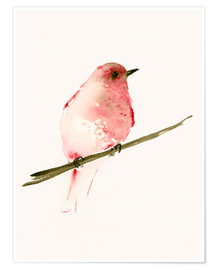 Premium poster  Rasberry red bird - Dearpumpernickel