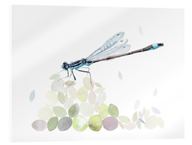 Acrylic print  Dragonfly Building - Verbrugge Watercolor