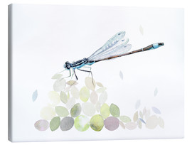 Canvas print  Dragonfly Building - Verbrugge Watercolor
