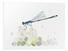 Foam board print  Dragonfly Building - Verbrugge Watercolor
