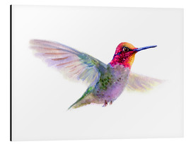 Aluminium print  Hummingbird - Verbrugge Watercolor