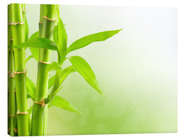 Canvas print  Green Bamboo