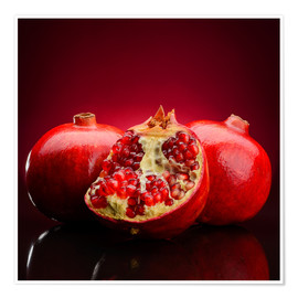 Premium poster  Red Pomegranate