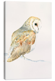 Canvas print  Barn Owl - Dearpumpernickel