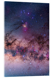 Acrylic print  Scorpius with parts of Lupus and Ara regions of the southern Milky Way. - Alan Dyer