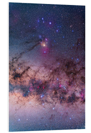 Foam board print  Scorpius with parts of Lupus and Ara regions of the southern Milky Way. - Alan Dyer