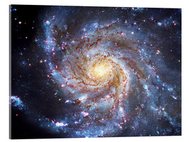 Acrylic print  The Pinwheel Galaxy at Ursa Major - Robert Gendler