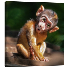 Canvas print  Baby Monkey - Photoplace Creative