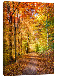 Canvas print  Indian Summer in North America - Jan Christopher Becke